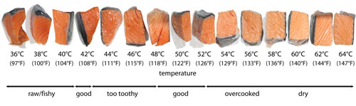Purdy pictures the charts for Temperature to bake fish