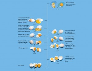 The Egg Chart 2006: This chart shows what happens to eggs when they are cooked to very precise temperatures. I use it to teach low-temperature cooking techniques.