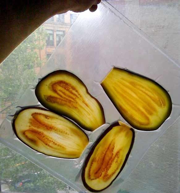 eggplant texture modified in a vacuum bag