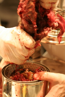 We filled pieces of duck into the container.  It was gory.