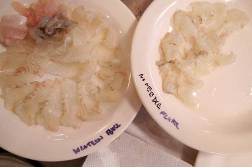 Fluke, no bleed on left, Japanese-bled on right, Ike Jime not pictured