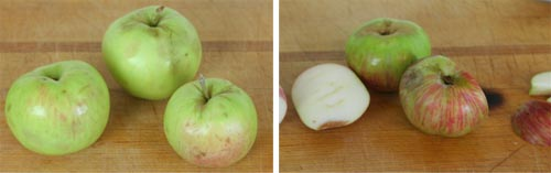 Gravenstein left, Red Astrachan right, two apples that didn't taste like the ones Nils used to get.