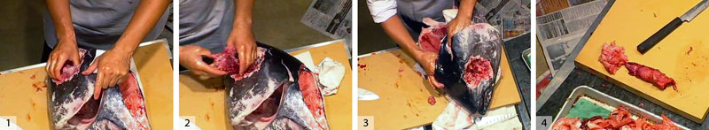 1) Trim the skin from the cheek area. Use your finger to free the cheek from the skin and the bone and 2) rip it out with your hand. 3) Use your fingers to free the meat on the top of the head and carefully remove it with your hand. 4) 1 cheek (the round piece) and one head piece.  Chef Kobayashi says they can be used either for tartar or for grilling like a steak.  They are very tender.